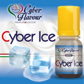 Cyber Ice
